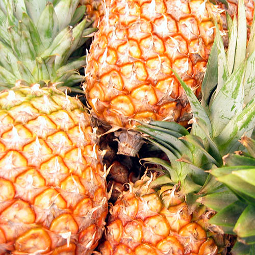 CAP Golden Pineapple